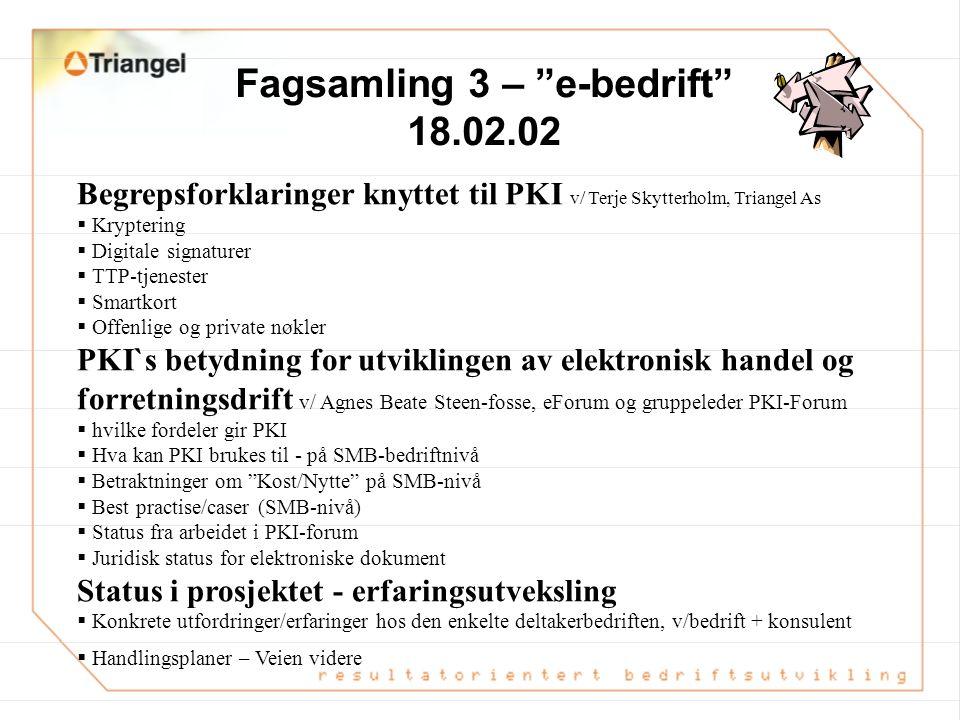 Fagsamling 3 – e-bedrift