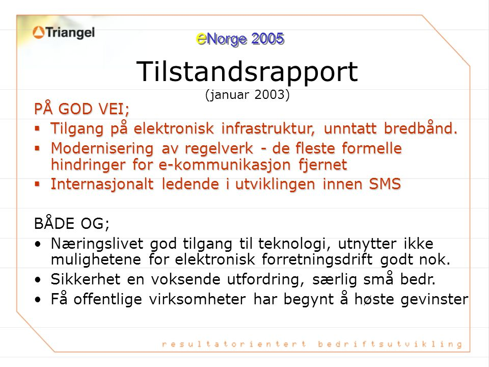 Tilstandsrapport (januar 2003)