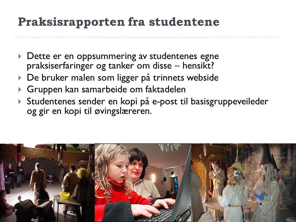Praksisrapporten fra studentene