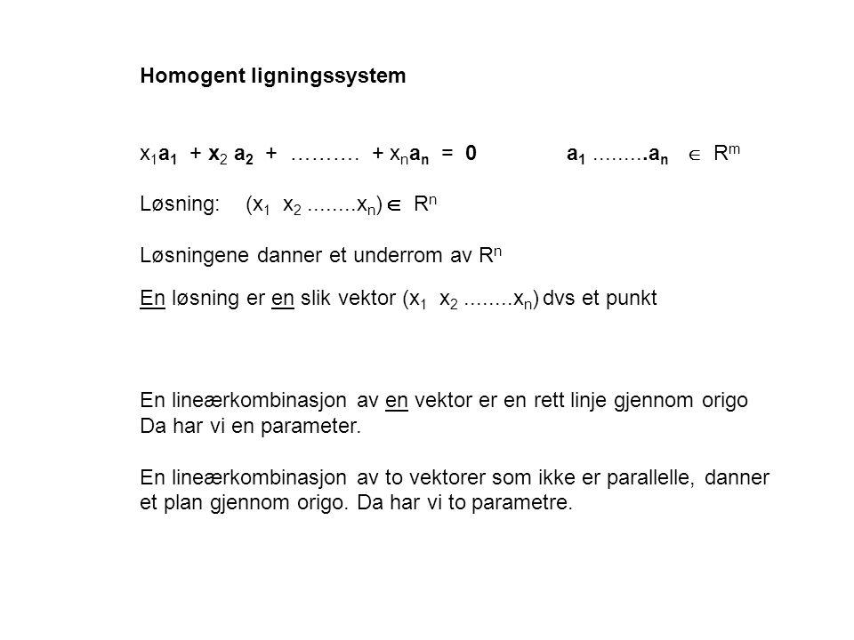 Homogent ligningssystem