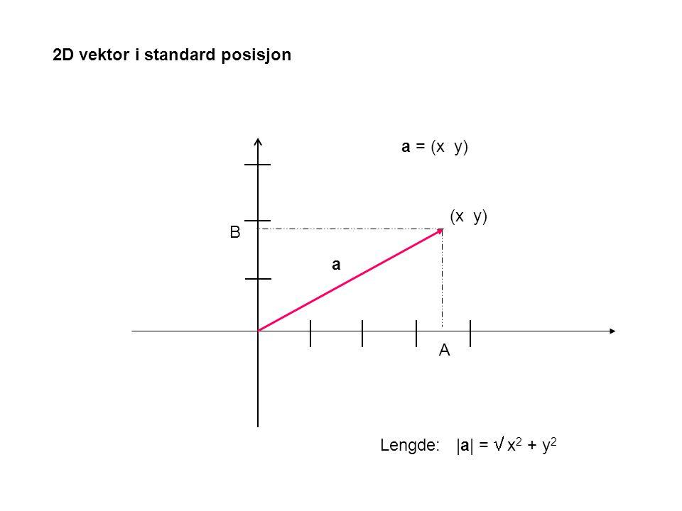 2D vektor i standard posisjon