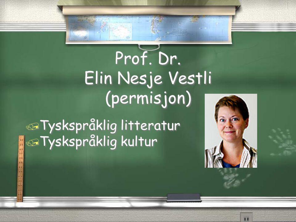Prof. Dr. Elin Nesje Vestli (permisjon)