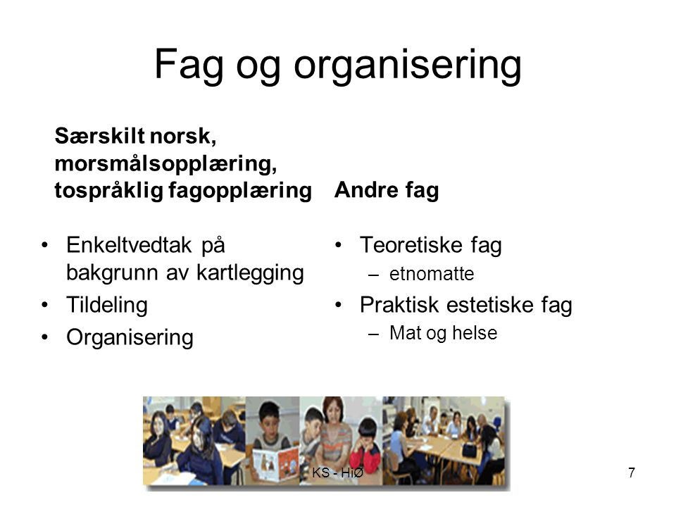 Fag og organisering Særskilt norsk, morsmålsopplæring, tospråklig fagopplæring. Andre fag. Enkeltvedtak på bakgrunn av kartlegging.