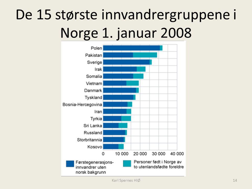 De 15 største innvandrergruppene i Norge 1. januar 2008