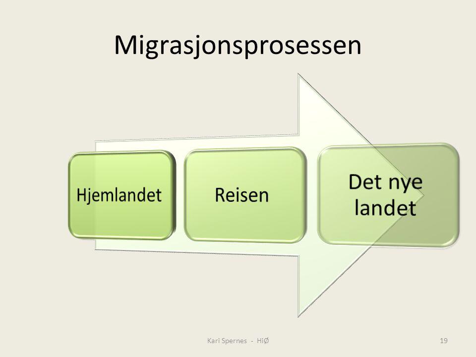 Migrasjonsprosessen Kari Spernes - HiØ Hjemlandet Reisen