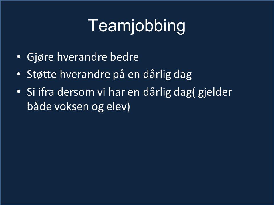 Teamjobbing Gjøre hverandre bedre Støtte hverandre på en dårlig dag