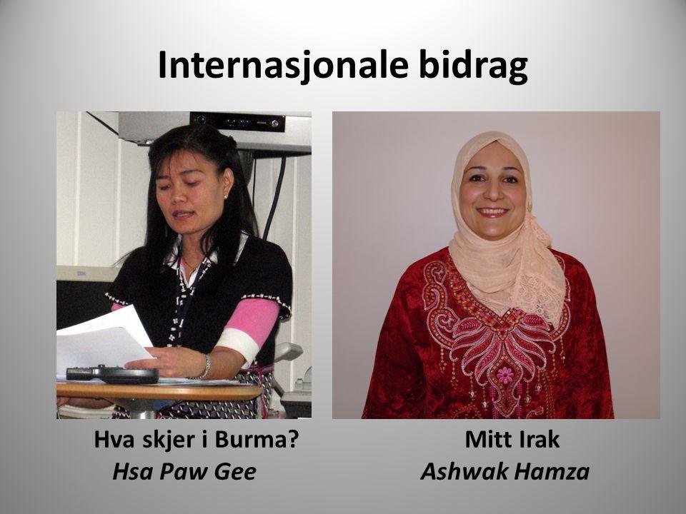 Internasjonale bidrag