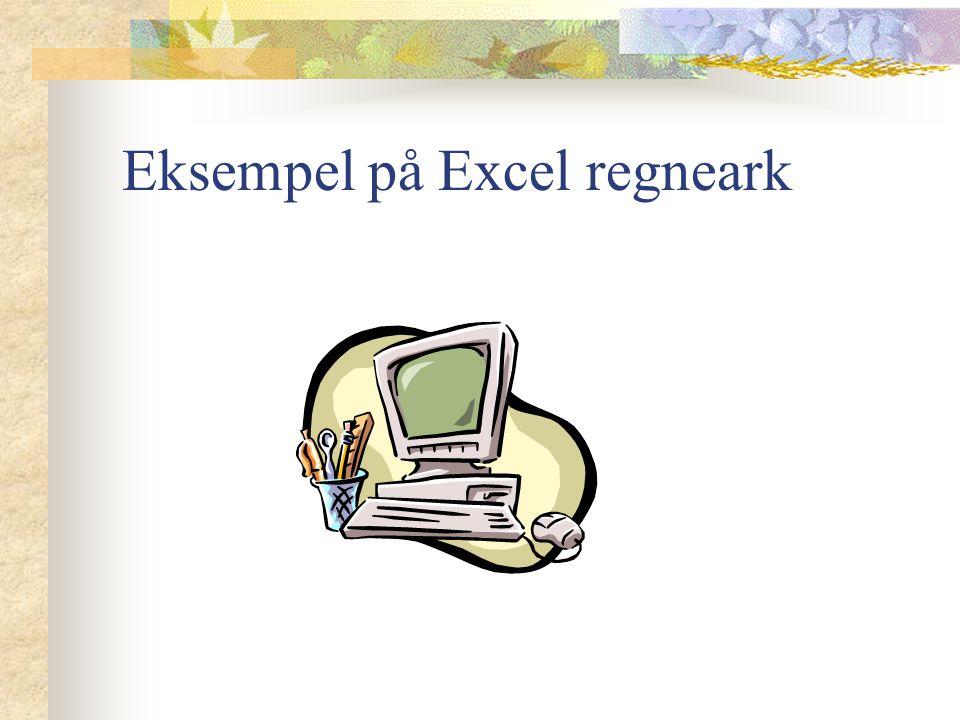 Eksempel på Excel regneark