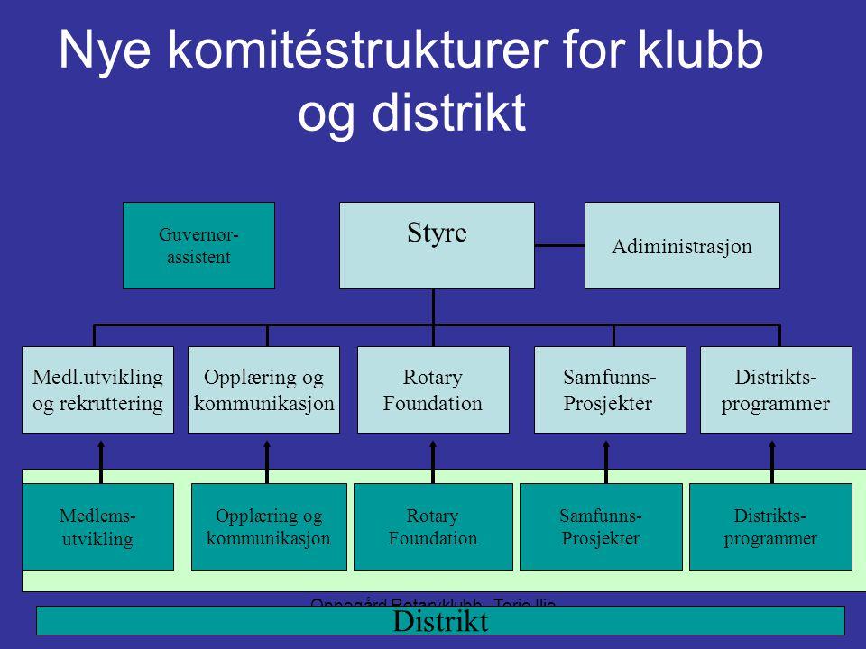 Nye komitéstrukturer for klubb og distrikt