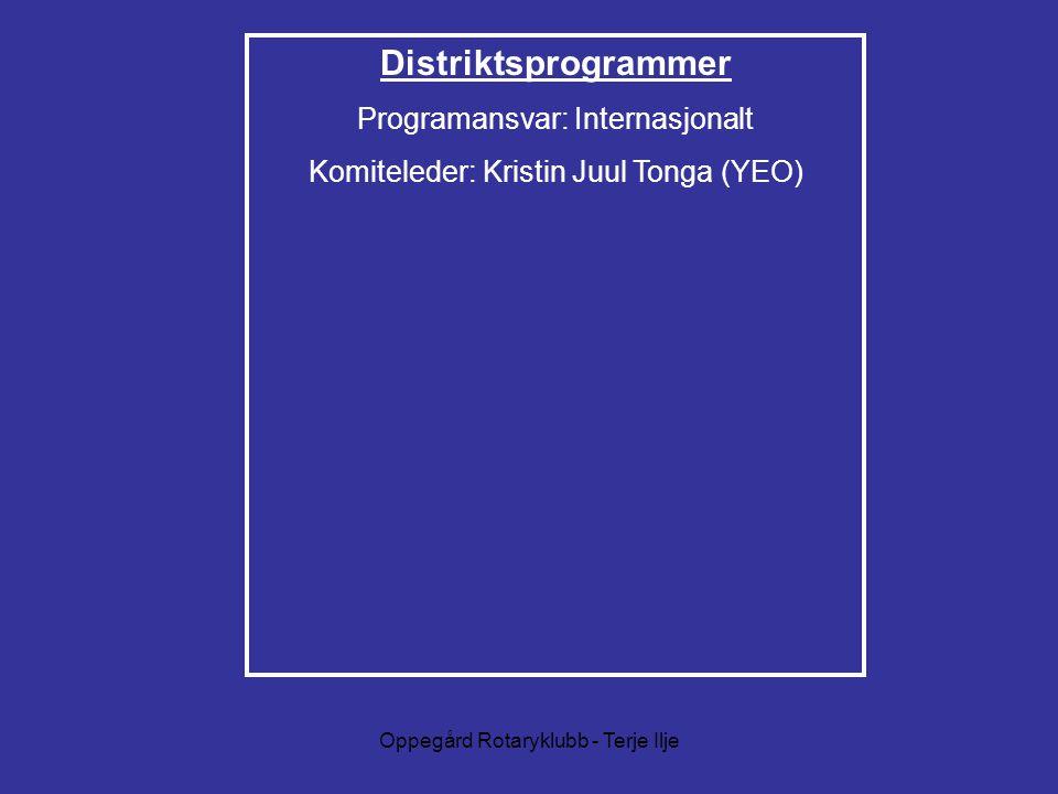 Distriktsprogrammer Programansvar: Internasjonalt