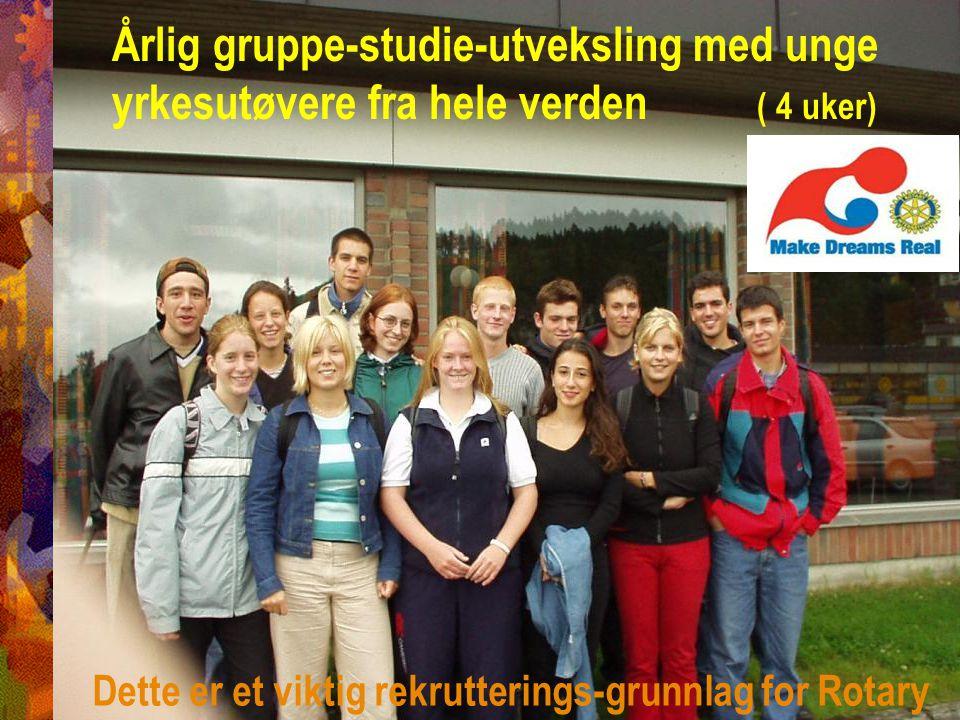 Årlig gruppe-studie-utveksling med unge yrkesutøvere fra hele verden ( 4 uker)