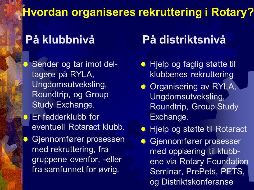 Hvordan organiseres rekruttering i Rotary