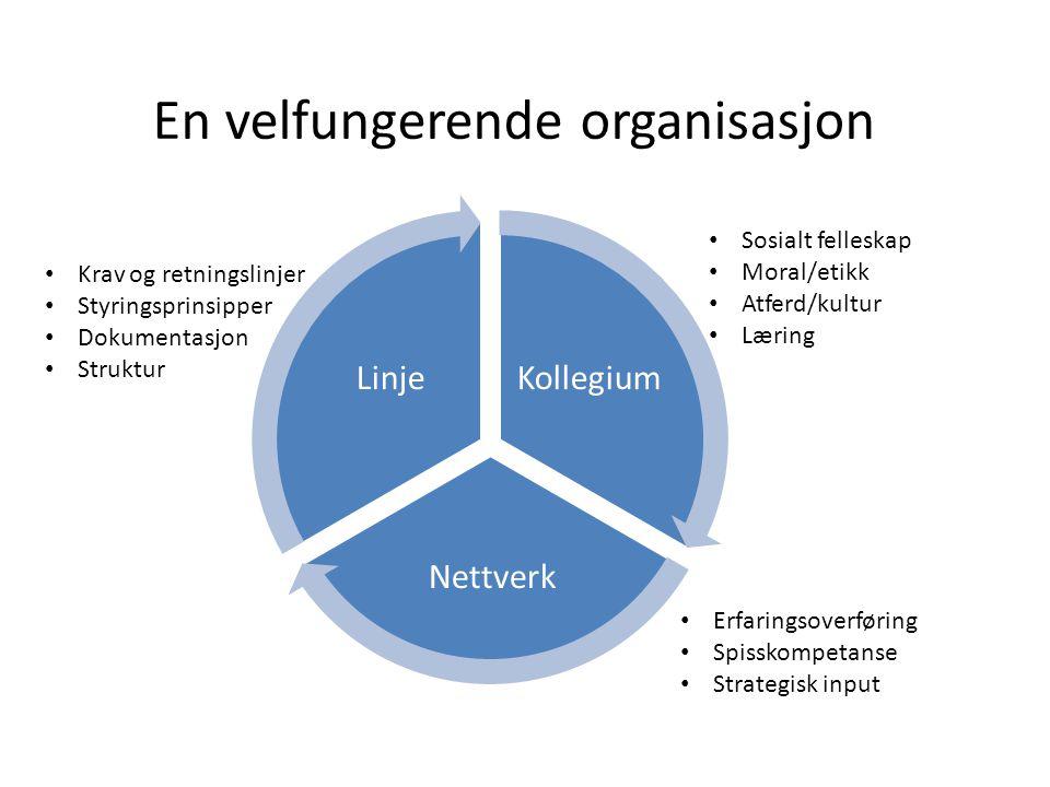 En velfungerende organisasjon