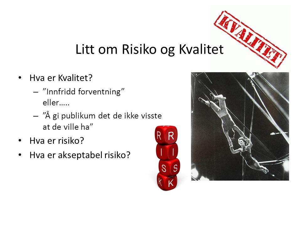 Litt om Risiko og Kvalitet