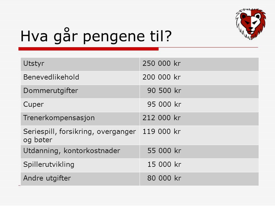 Hva går pengene til Utstyr 250 000 kr Benevedlikehold 200 000 kr