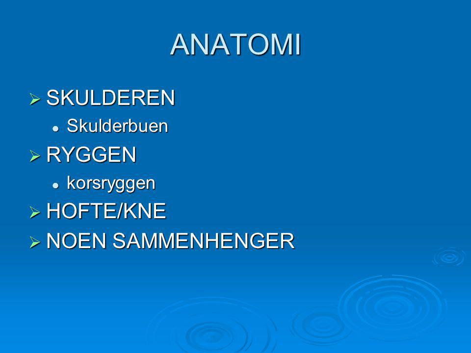 ANATOMI SKULDEREN RYGGEN HOFTE/KNE NOEN SAMMENHENGER Skulderbuen