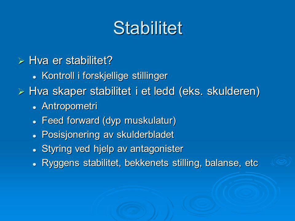 Stabilitet Hva er stabilitet