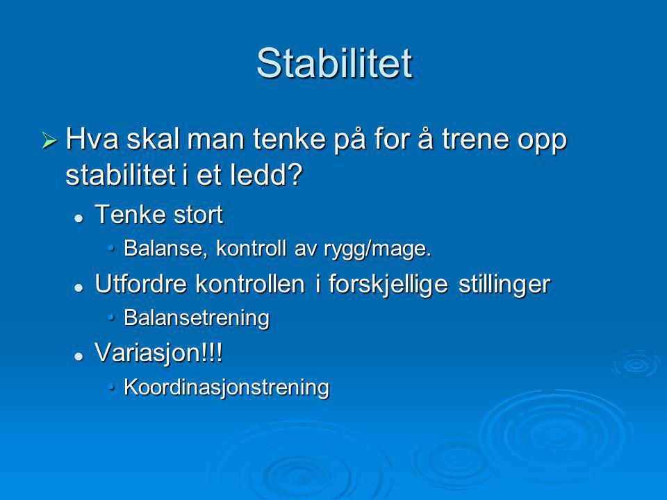 Stabilitet Hva skal man tenke på for å trene opp stabilitet i et ledd