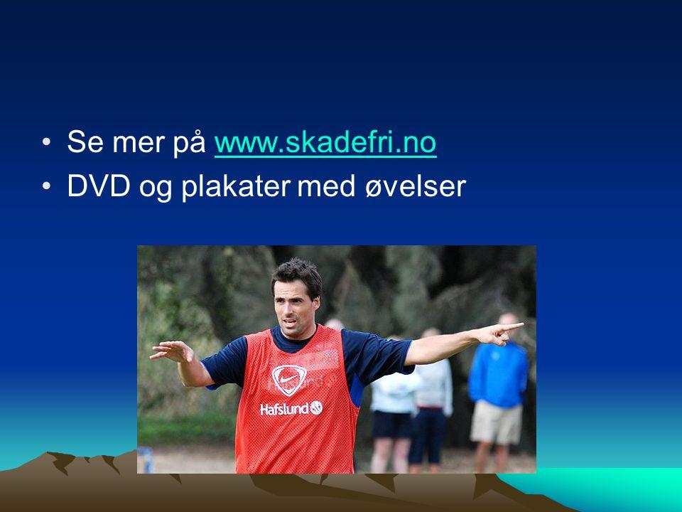 Se mer på www.skadefri.no