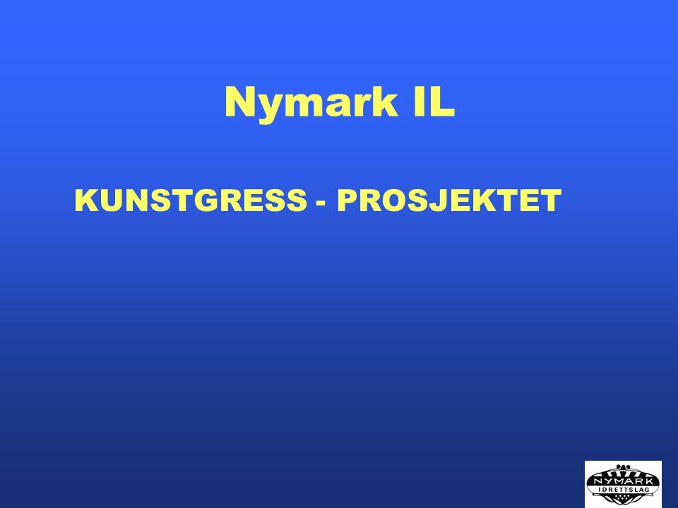 KUNSTGRESS - PROSJEKTET