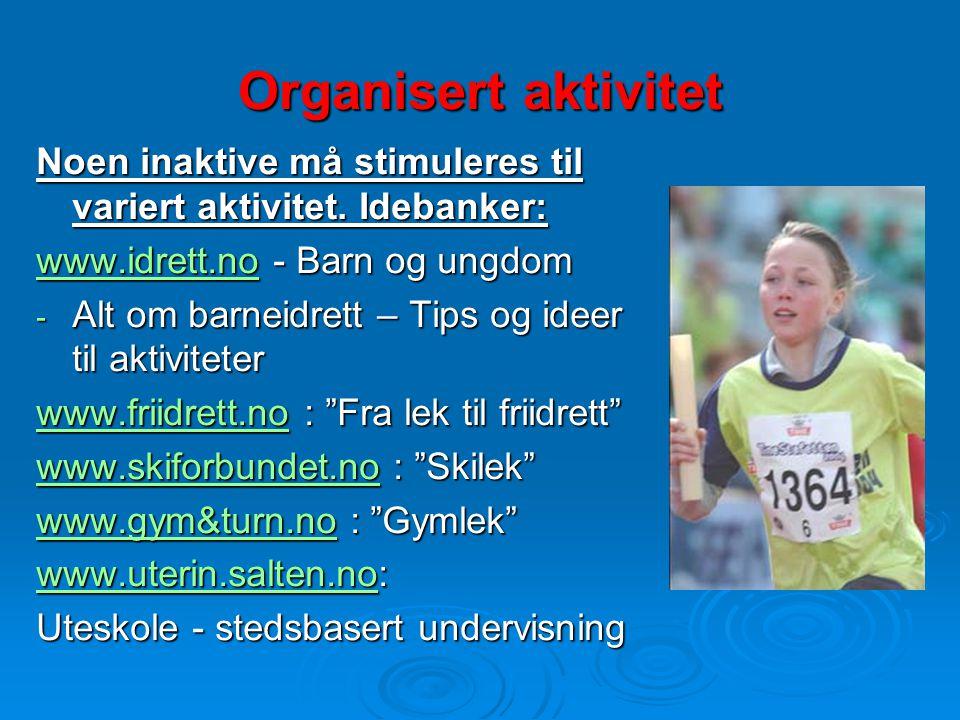 Organisert aktivitet Noen inaktive må stimuleres til variert aktivitet. Idebanker: www.idrett.no - Barn og ungdom.