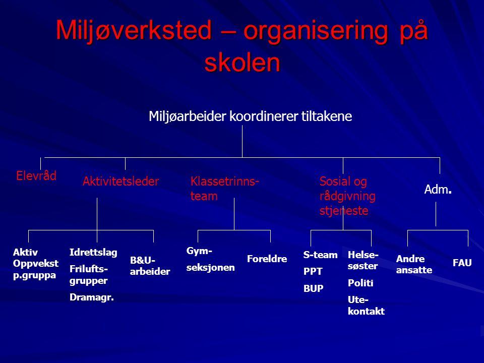 Miljøverksted – organisering på skolen