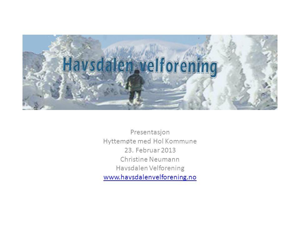 Hyttemøte med Hol Kommune 23. Februar 2013 Christine Neumann
