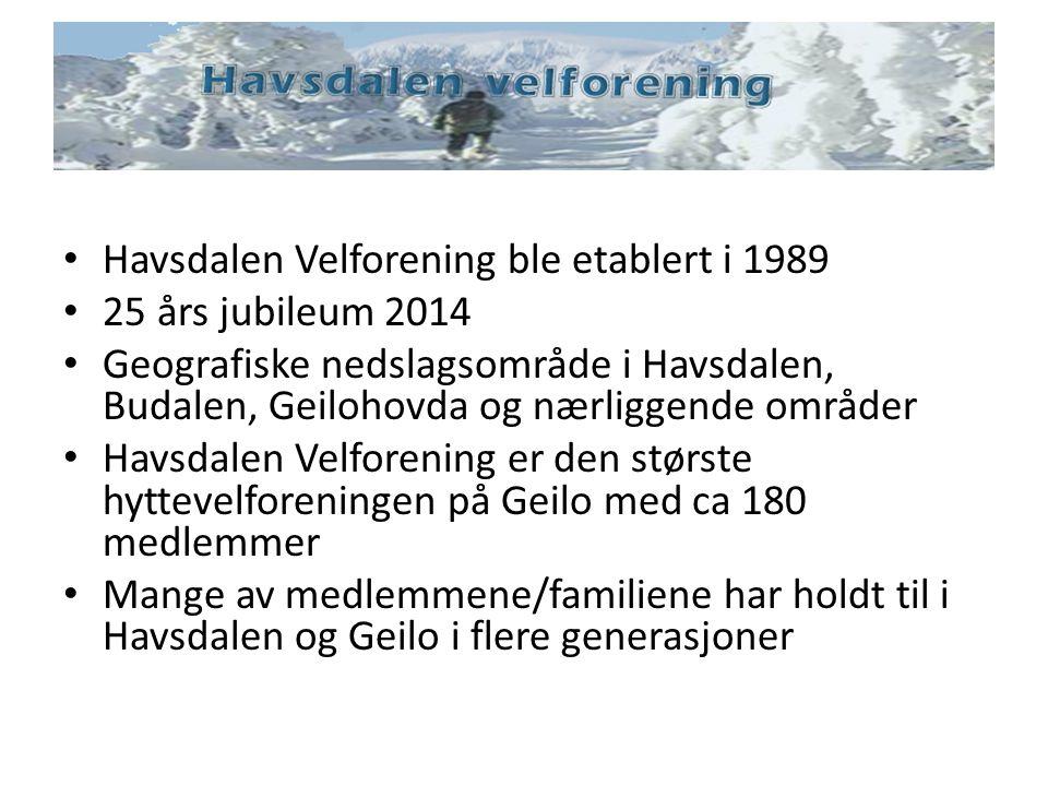 Havsdalen Velforening ble etablert i 1989