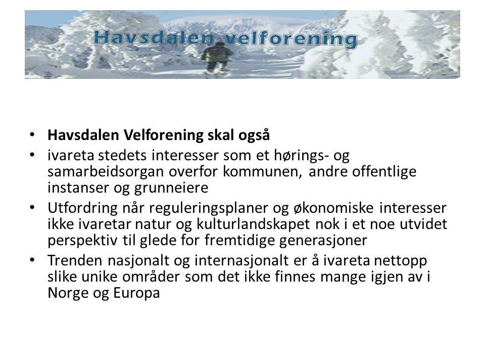 Havsdalen Velforening skal også