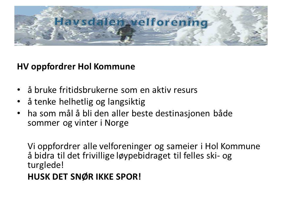 HV oppfordrer Hol Kommune