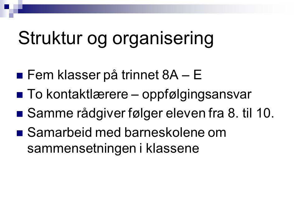 Struktur og organisering