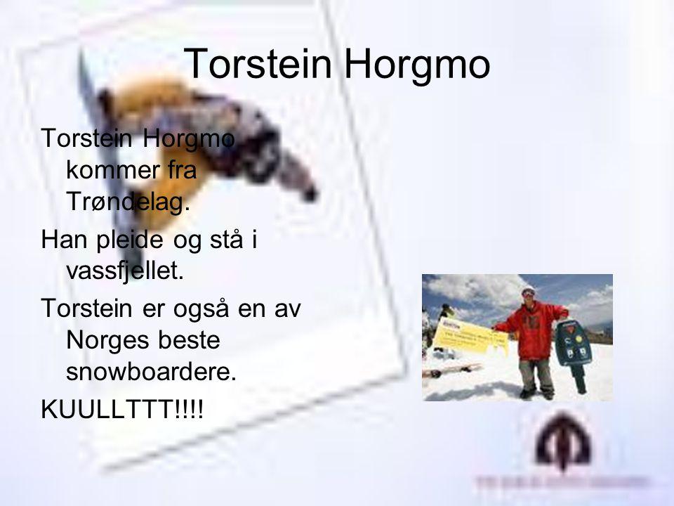 Torstein Horgmo Torstein Horgmo kommer fra Trøndelag.