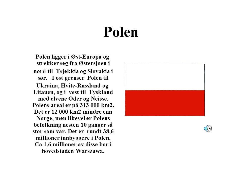 Polen Polen ligger i Øst-Europa og strekker seg fra Østersjøen i