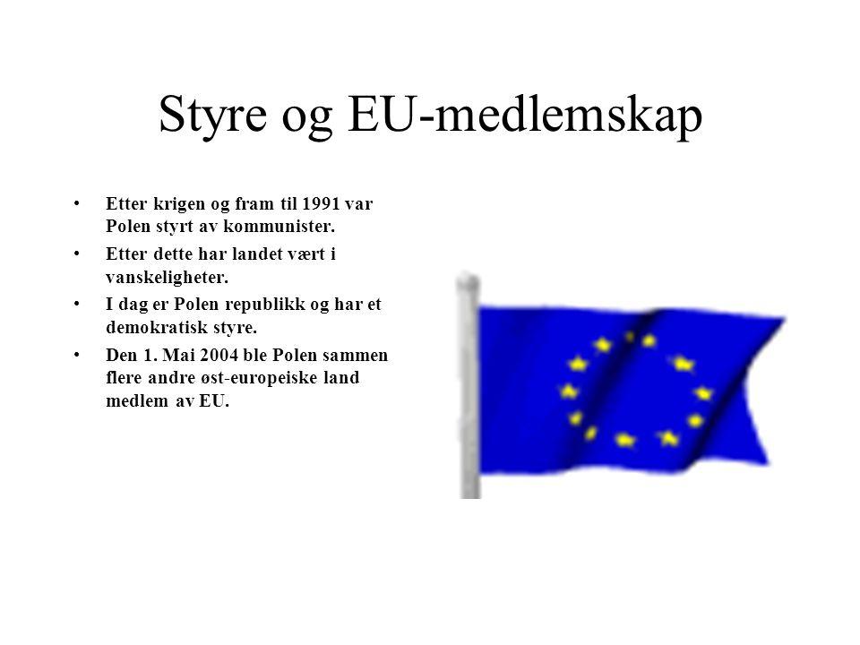 Styre og EU-medlemskap