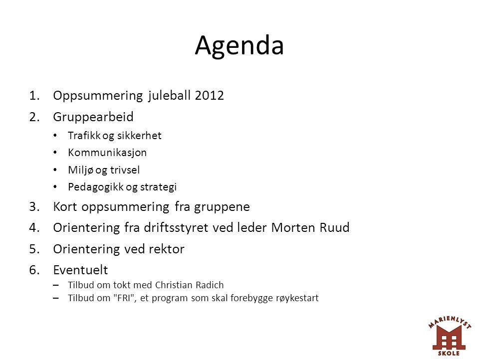 Agenda Oppsummering juleball 2012 Gruppearbeid