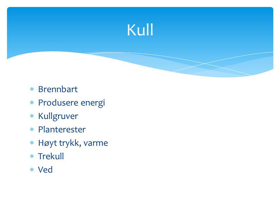 Kull Brennbart Produsere energi Kullgruver Planterester