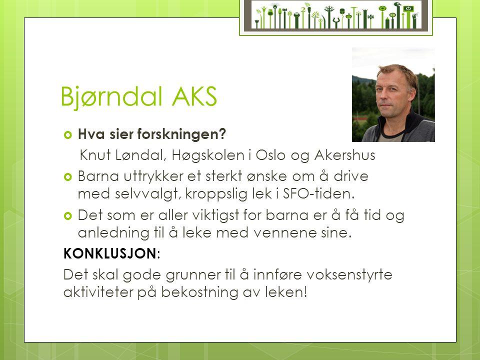 Bjørndal AKS Hva sier forskningen