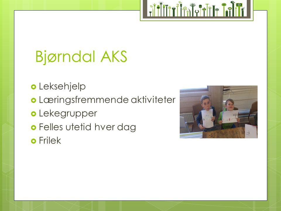 Bjørndal AKS Leksehjelp Læringsfremmende aktiviteter Lekegrupper