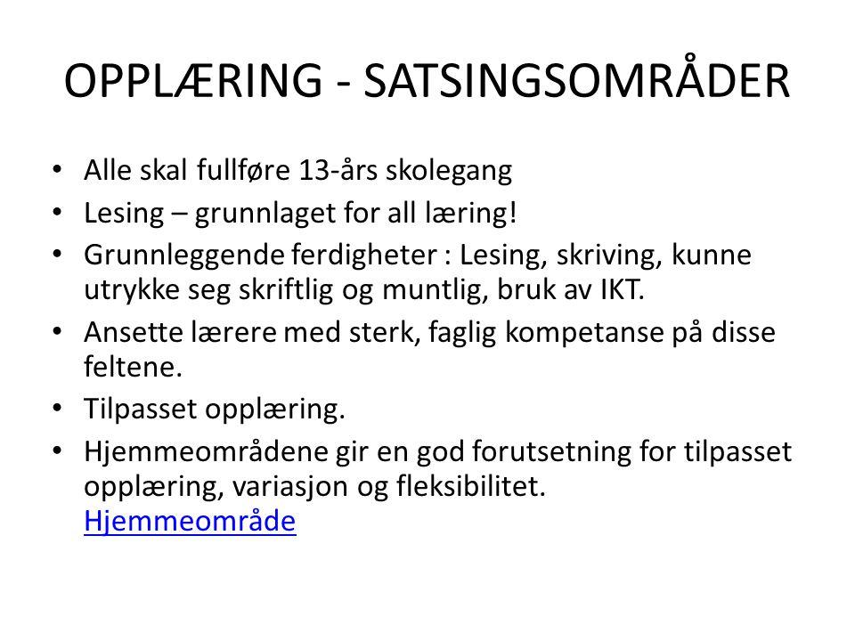 OPPLÆRING - SATSINGSOMRÅDER