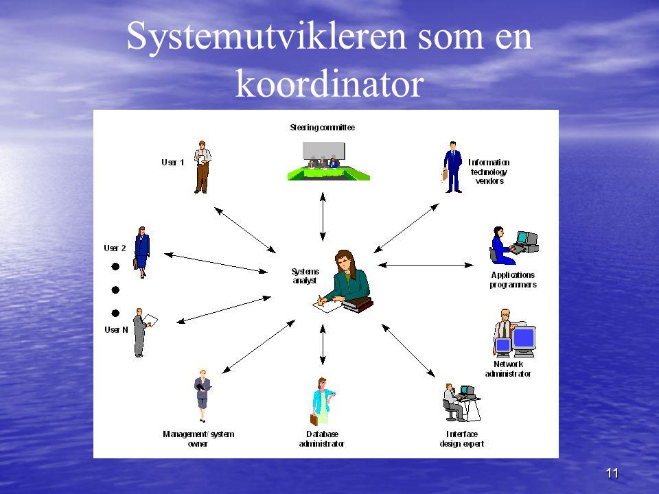 Systemutvikleren som en koordinator
