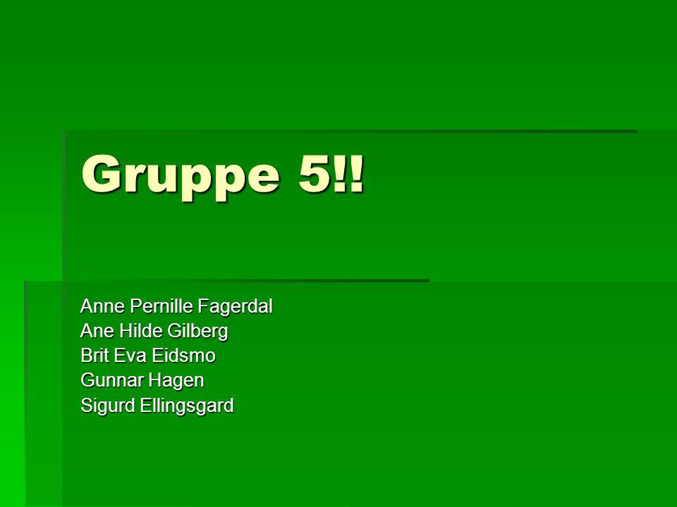Gruppe 5!! Anne Pernille Fagerdal Ane Hilde Gilberg Brit Eva Eidsmo