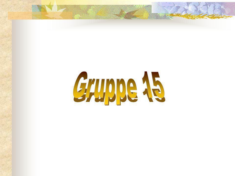 Gruppe 15