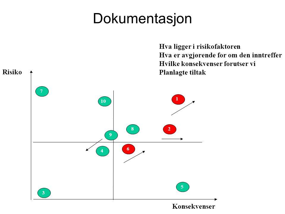 Dokumentasjon Hva ligger i risikofaktoren