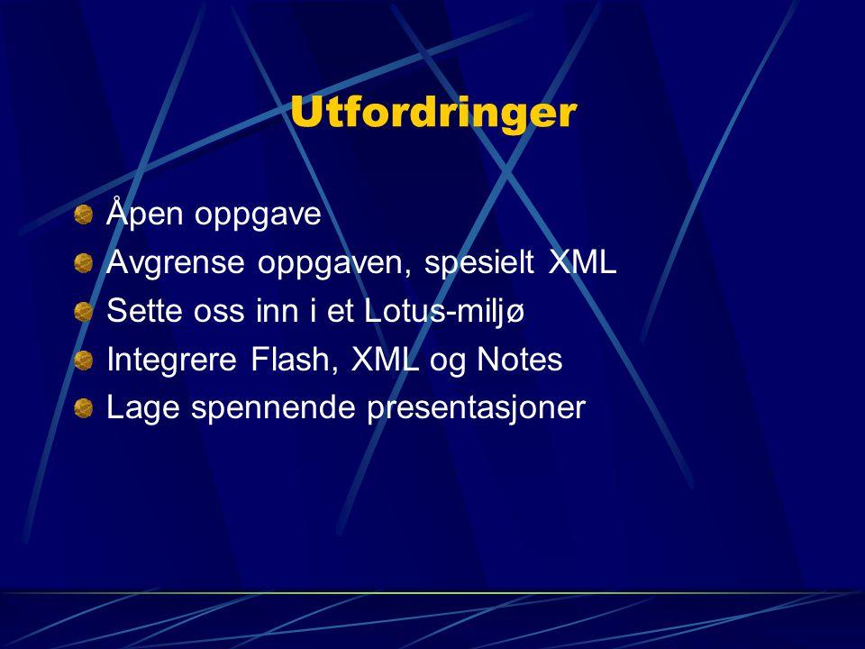 Utfordringer Åpen oppgave Avgrense oppgaven, spesielt XML