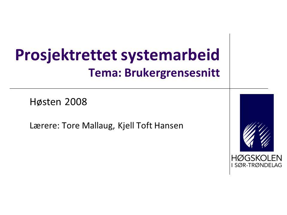 Prosjektrettet systemarbeid Tema: Brukergrensesnitt