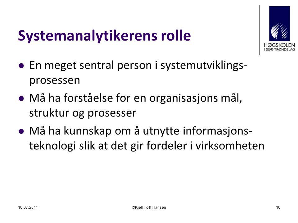Systemanalytikerens rolle