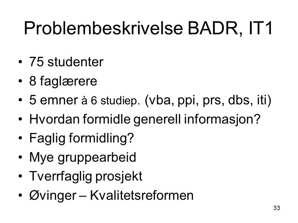 Problembeskrivelse BADR, IT1