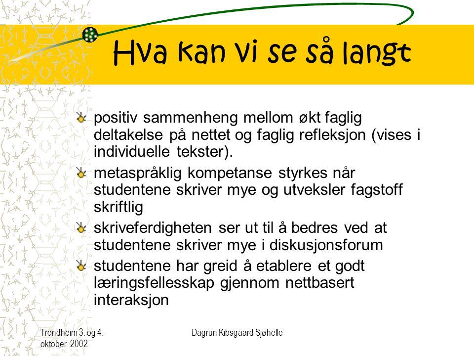 Dagrun Kibsgaard Sjøhelle, Høgskolen i Sør-Trøndelag