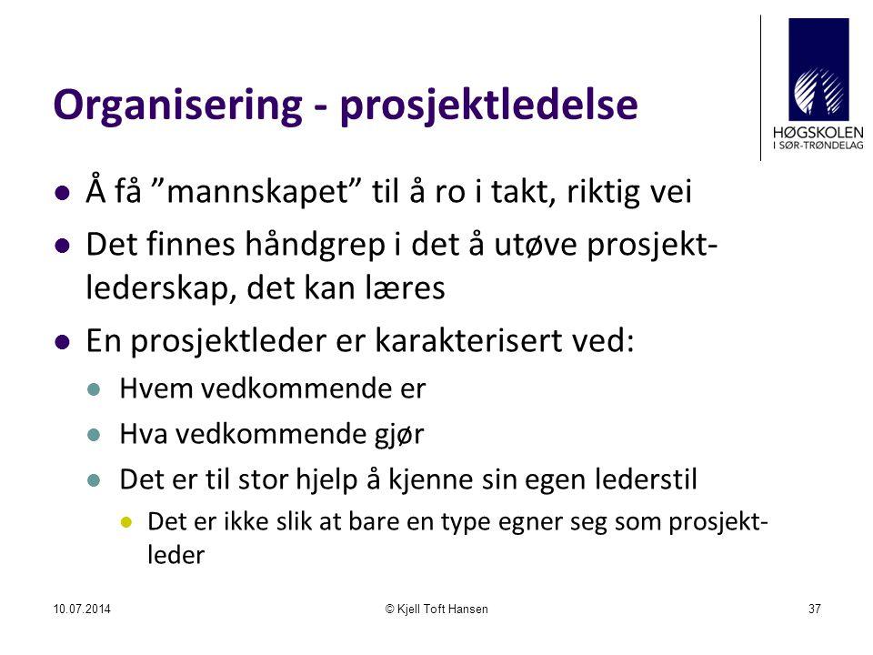 Organisering - prosjektledelse