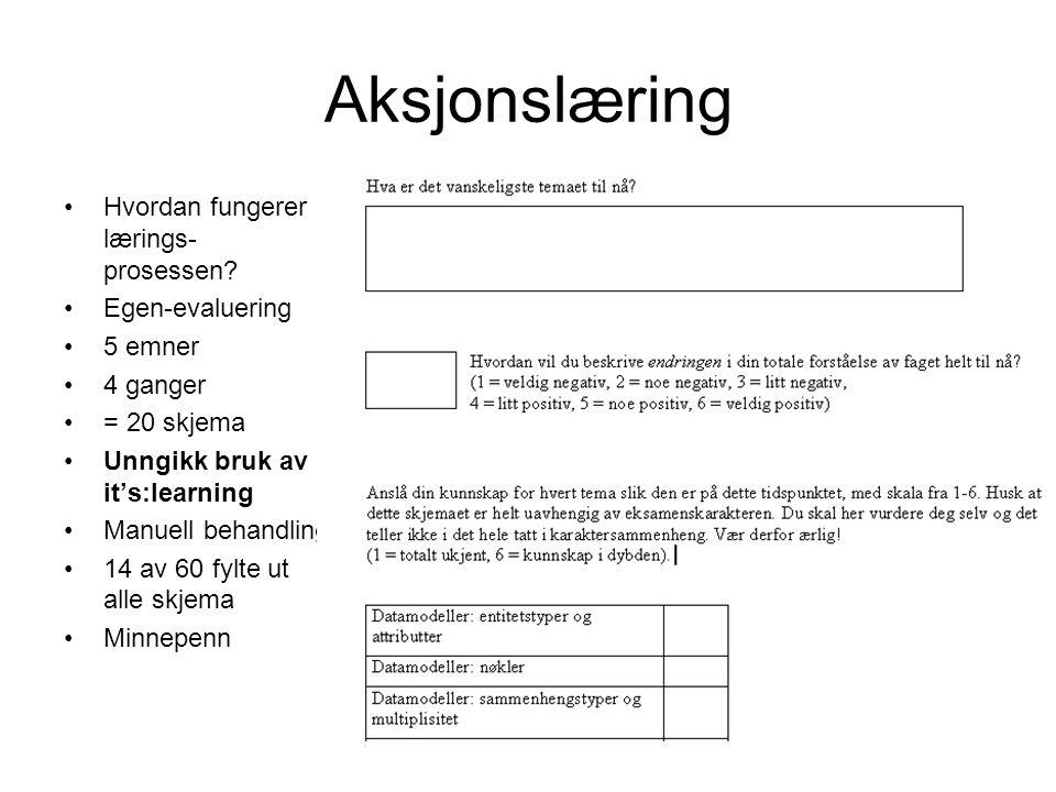 Aksjonslæring Hvordan fungerer lærings-prosessen Egen-evaluering